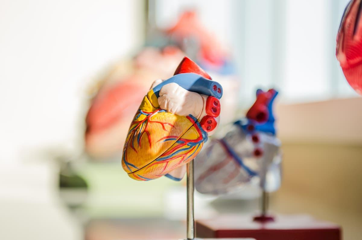 akupunktūros hipertenzijos taškas hipertenzija ir saldymedis