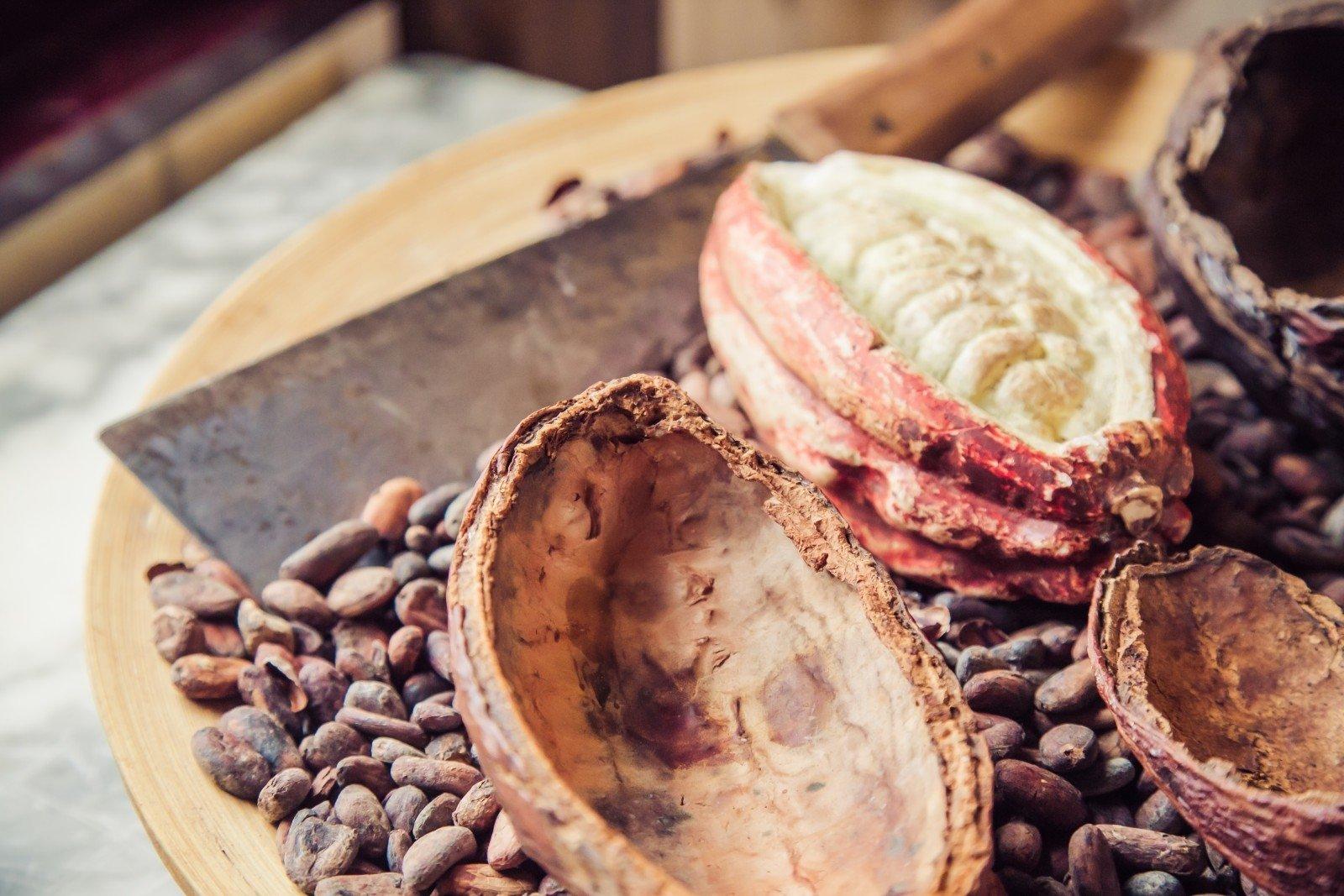 kakavos pupelių širdies sveikata hipotenzijos perėjimas į hipertenziją