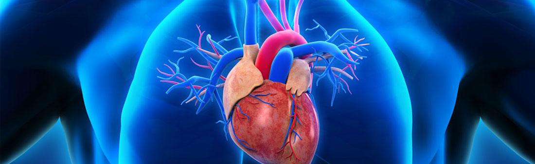 vaizdo kursas be hipertenzijos su hipertenzija ką gerti