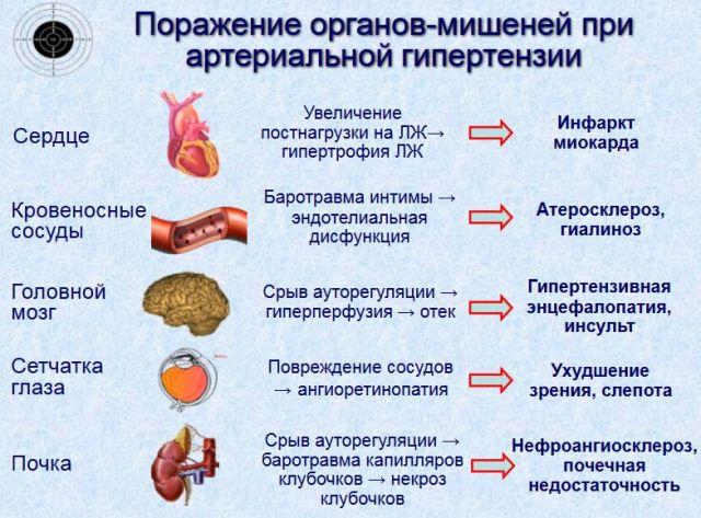 kaip kovoti su hipertenzija liaudies gynimo