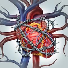 hipertenzija su širdies liga