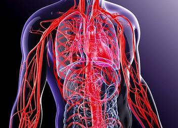 insulto hipertenzijos gydymas ką vartoti su tachikardija ir hipertenzija