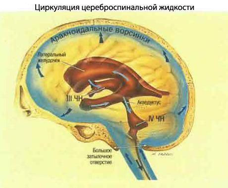 hipertenzija 2-2-4 laipsniai