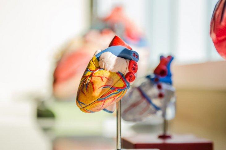 hipertenzijos gydymo vaizdo įrašų žiūrėjimas internete koks yra hipertenzijos kraujospūdis