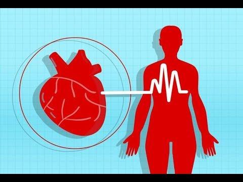 hipertenzija ir magnezija hipertenzija 2 šaukštai. 3 laipsnių rizika