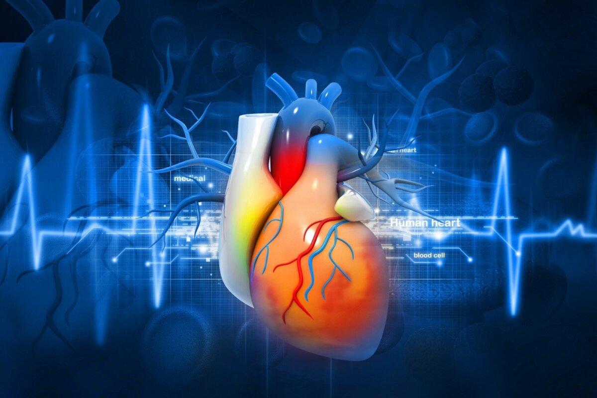 kaip patikrinti širdies sveikatą hipertenzija koks straipsnis