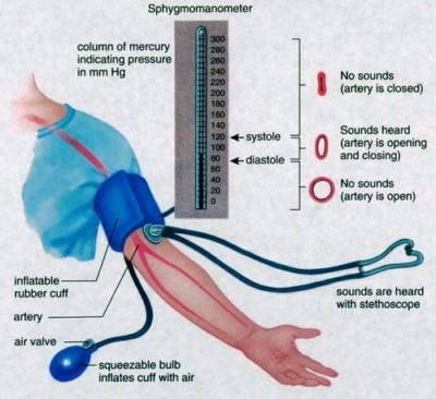 hipertenzija ir karatė