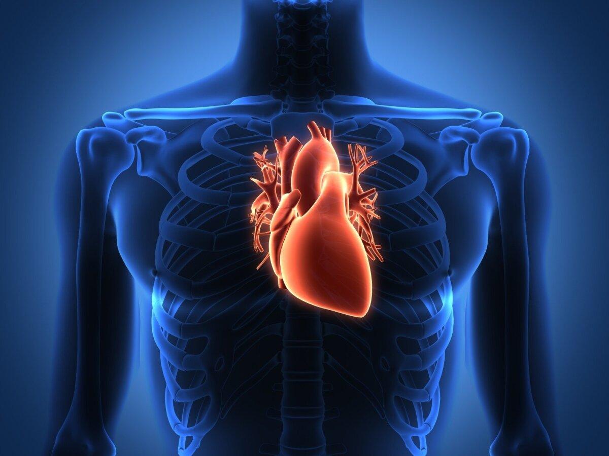 beta adrenoblokatorių širdies sveikata Evdokimenko hipertenzija