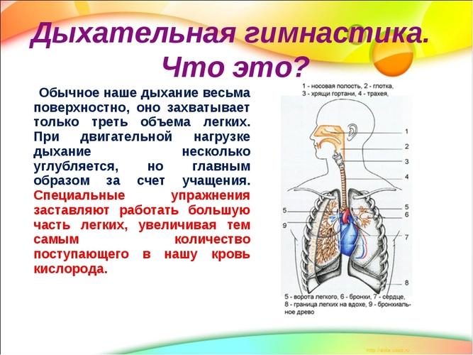 fenotropilas ir hipertenzija