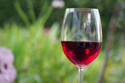 geriausias raudonojo vyno ženklas širdies sveikatai hipertenzijos sirupas