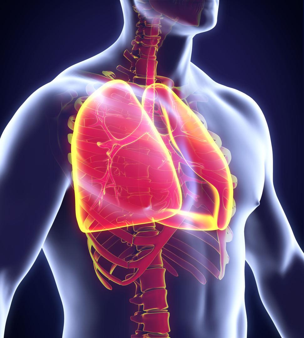 emfizema plaučių hipertenzija granatų sulčių nauda sveikatai dėl prostatos vėžio ir širdies