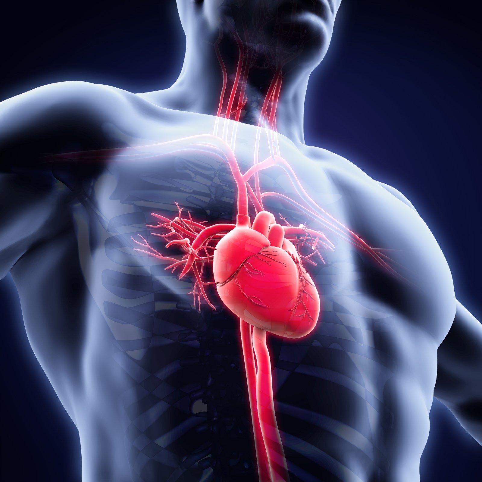 kokia yra mankštos nauda širdies sveikatai vaistai nuo hipertenzijos sergant astma