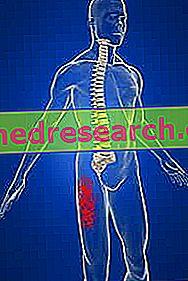 hipertenzijos simptomai ir gydymas suaugusiems silicio ir širdies sveikata