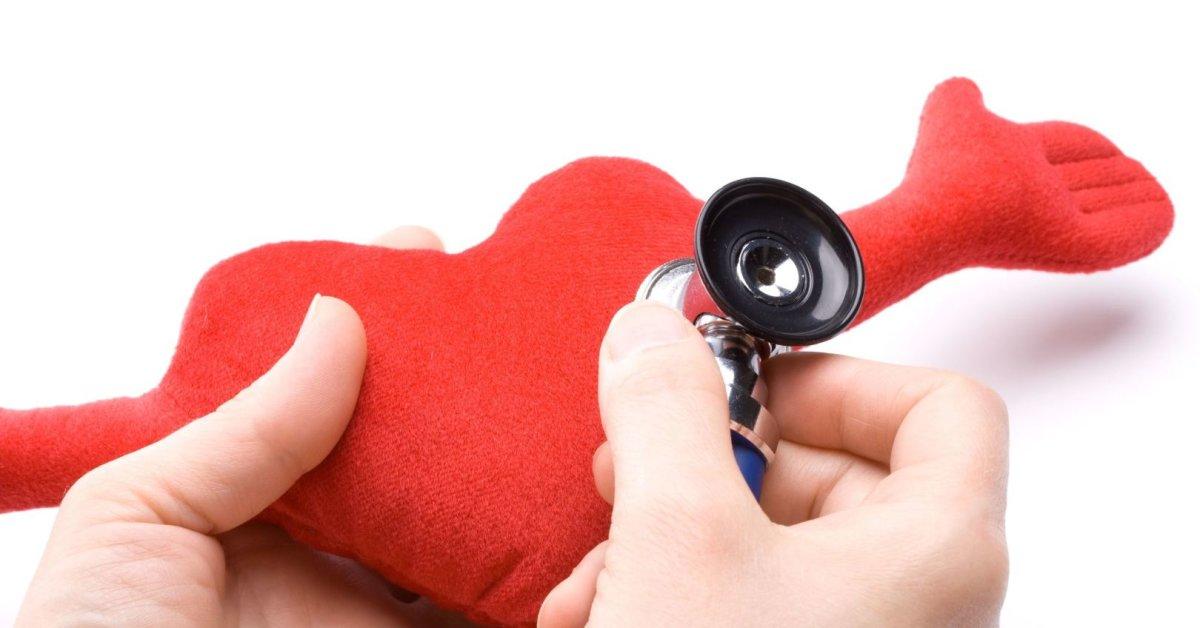 Širdies ir kraujagyslių sistemos patikrinimo programa | Medcentras