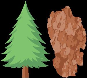 medžiai hipertenzijai gydyti