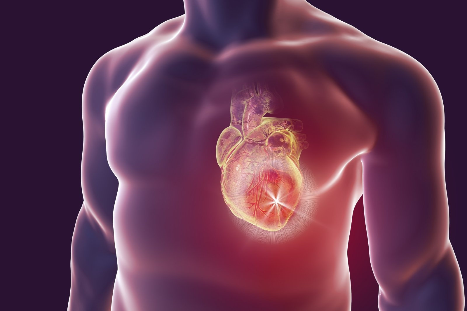 naujos širdies sveikatos gairės namams