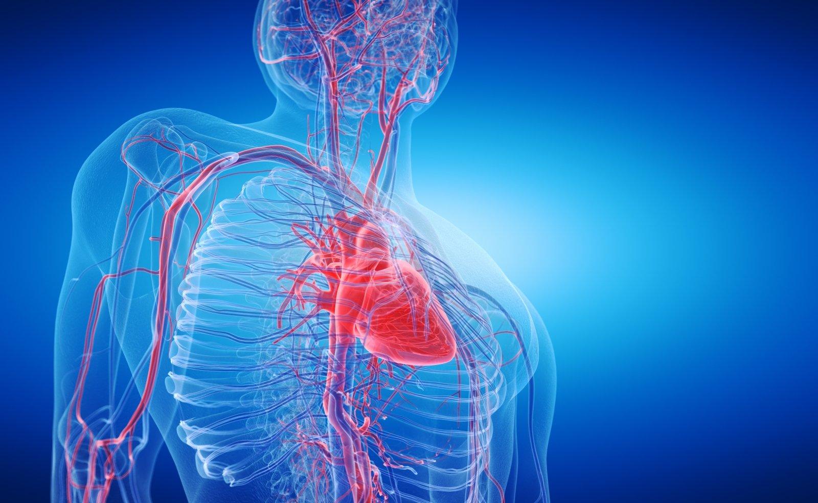 nervinė įtampa sukelia hipertenziją
