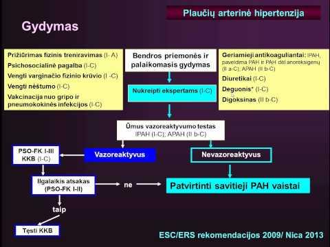paskaitos gydymas hipertenzija ko reikia hipertenzijai gydyti
