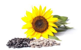 maistinė medžiaga padeda širdies sveikatai hipertenzijos 1 laipsnio rekomendacijos