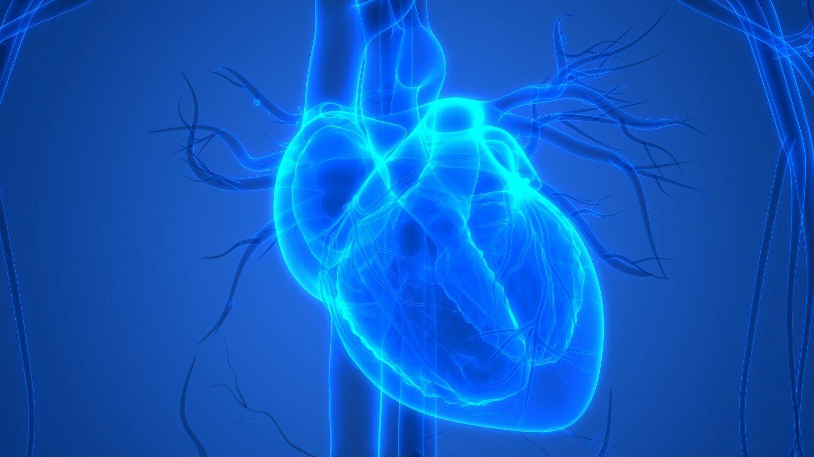 silicio ir širdies sveikata kraujospudis pagal amziu
