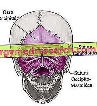 viduje kaukolės hipertenzija