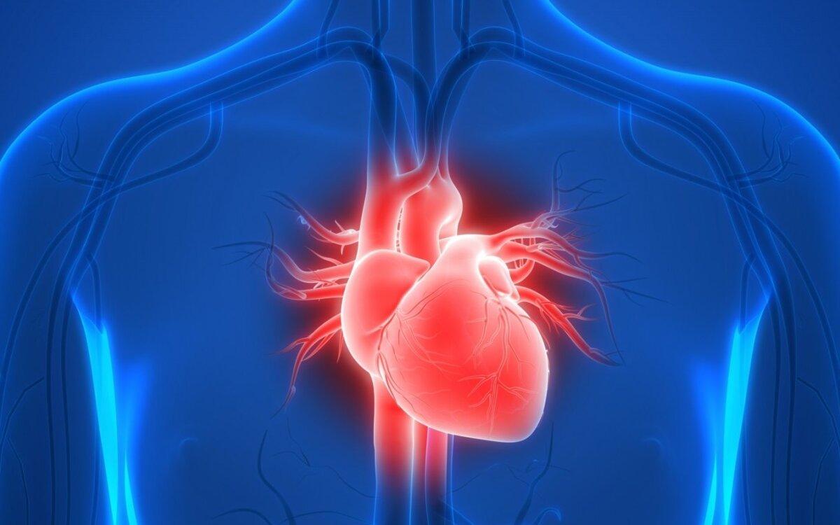 arbatos receptas sergant hipertenzija kaip išgydyti hipertenziją video