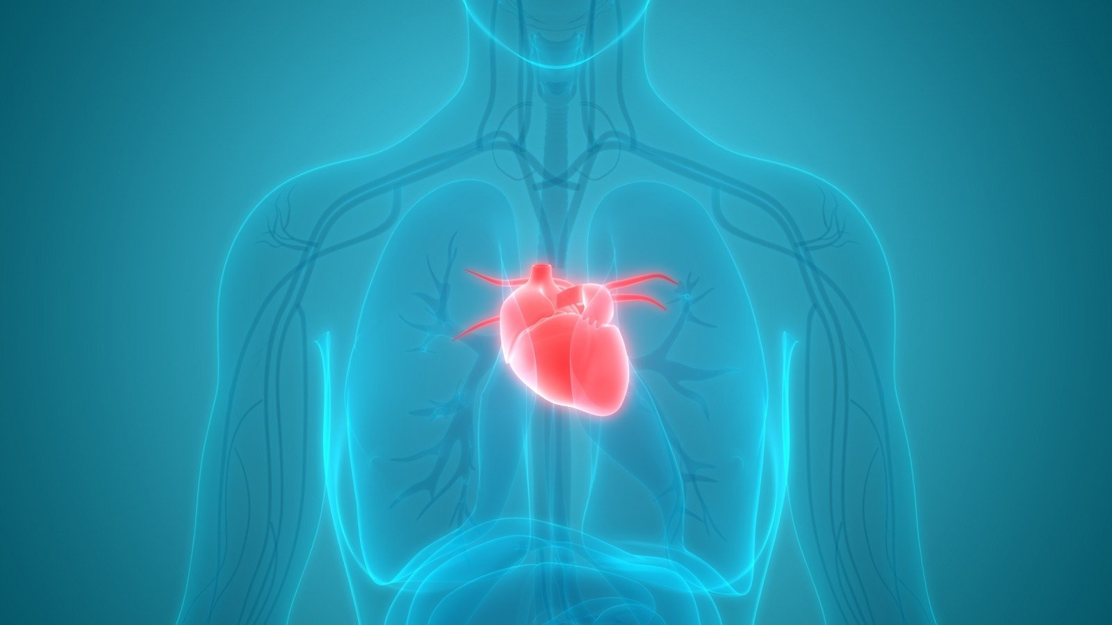 oris. hipertenzijos gydymas