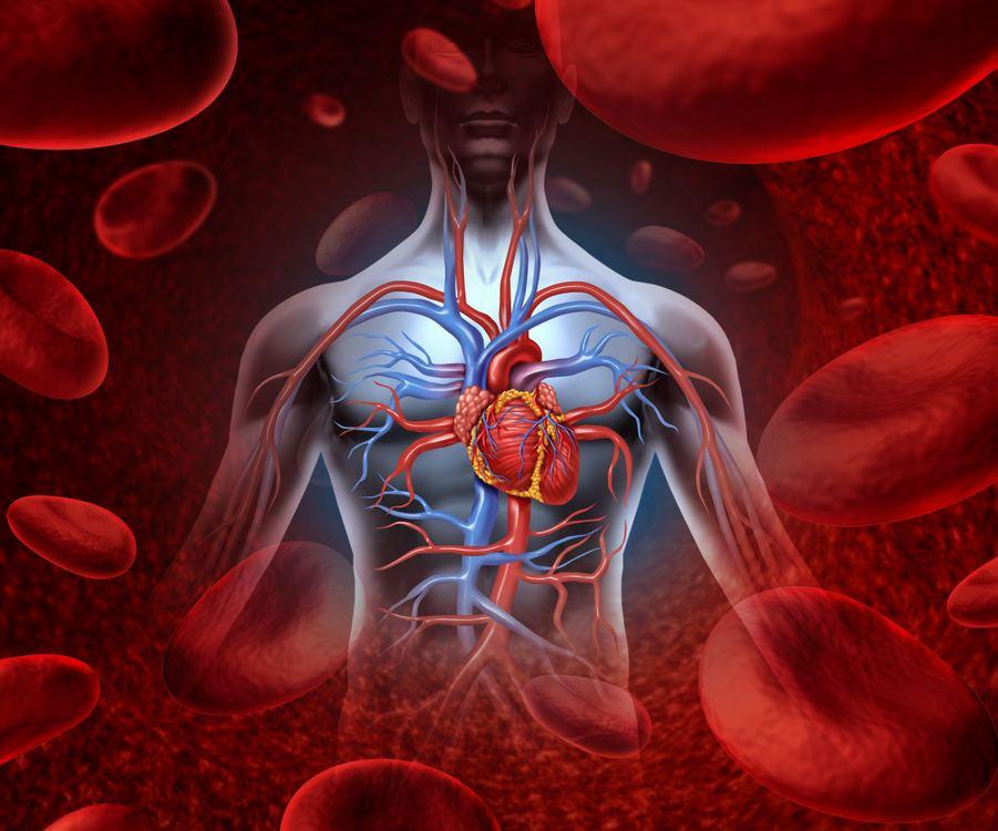 sergantiems hipertenzijos liga hipertenzijos slėgio gydymas