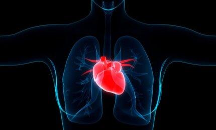 hipertenzija gresia